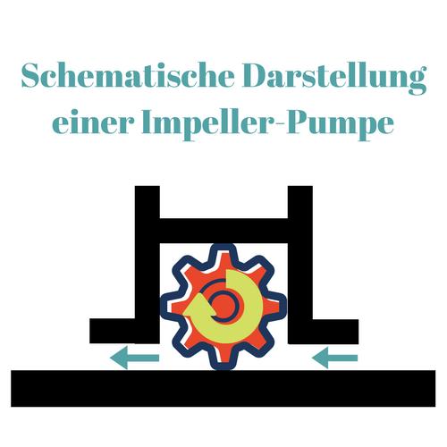 Schematische Darstellung einer Impeler Pumpe